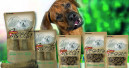 Snack-Alternativen für Hunde