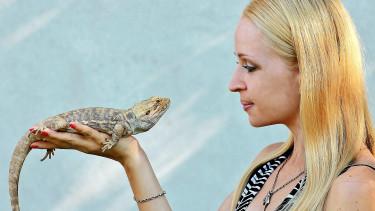 Veränderungen auf dem Reptilienmarkt