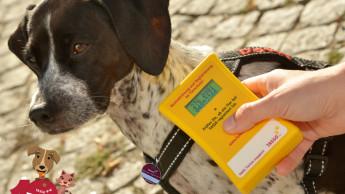 Zehn Millionen registrierte Tiere bei Tasso