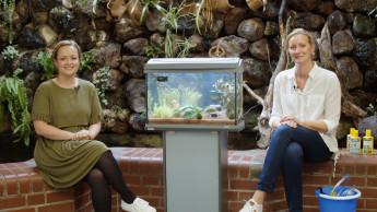 Mitmach- und Erlebnisclub für junge Aquarianer