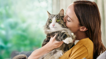 Katzennahrung mit echtem Mehrwert
