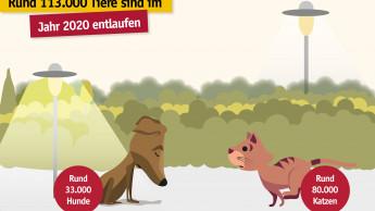 Tasso bringt über 93.000 Tiere zurück