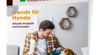 Trends für Hunde - Aktuelle Produkte und Konzepte