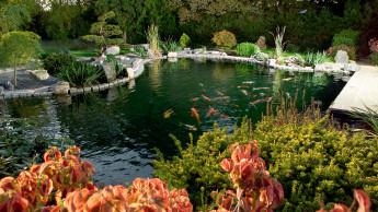 Zufluchtsort Garten