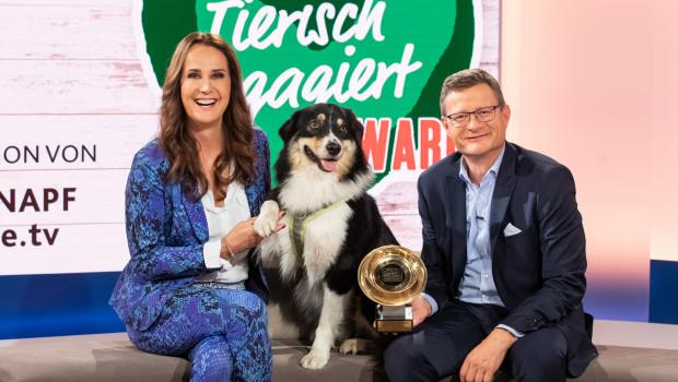 """Die Verleihung des """"Tierisch engagiert""""-Awards fand im TV und Online statt. Maggie Entenfellner, Journalistin und Tierschützerin, und Hermann Aigner, Geschäftsführer Fressnapf Österreich, führten durch die Sendung."""