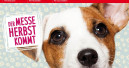 Messe Stuttgart sagt Heimtiermesse Animal ab