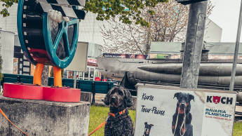 Heimtierfirmen bieten tierischen Empfang