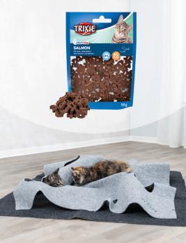 Zahnpflege-Snack für Katzen, Denta Fun Salmon-Snacks, Trixie