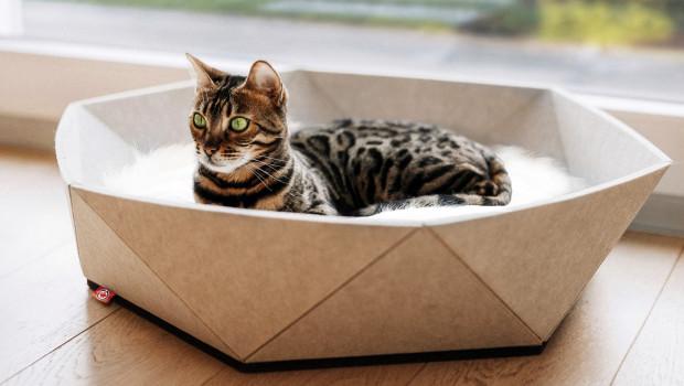 Katzenkorb Zoey, Wagner Pet Products, Canadian Cat Company
