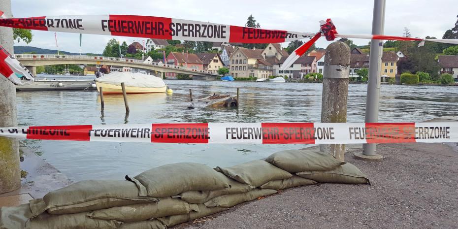 Heimtierbranche, Unwetterkatastrophe , Foto: Thomas Oettinger, Pixabay
